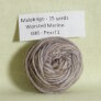 Malabrigo Worsted Merino Samples - Pearl 1