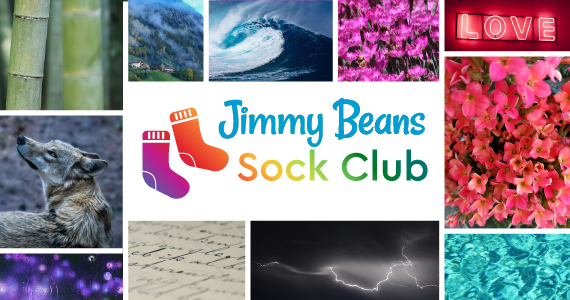 Sock Club Header