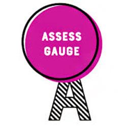 SmartStix A means Assess Gauge