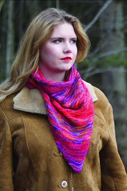 Koigu Paint Can Ana Shawl/Scarf Kit