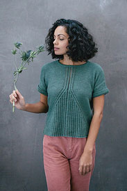 Shibui Staccato Ginkgophyte Tee Kit