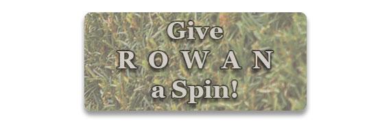 CTA: Give Rowan a Spin