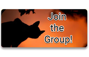 CTA 2: Join the Group!