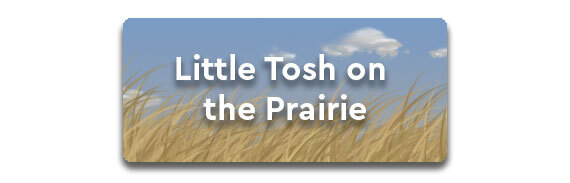 Little Tosh on the Prairie!
