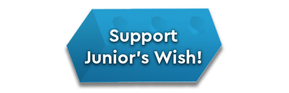 Make a Wish - Support Junior's Wish