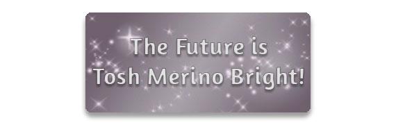 The Future is Tosh Merino Bright!