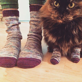 Kitty Tube Socks