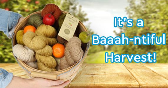Urth Harvest Yarn