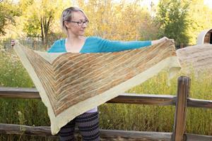 Jeanne's Stripe Study Shawl