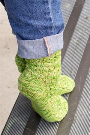 Rubus suberectus Socks