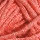 Sun City - 224 Pink Salmon