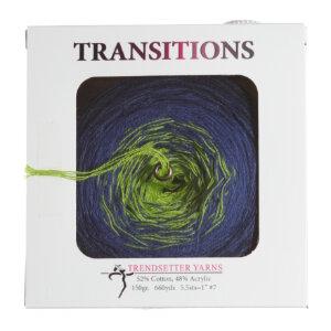 Trendsetter Transitions