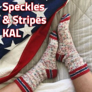 Lorna's Laces Speckles & Stripes Sock KAL yarn USA
