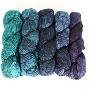 Malabrigo Worsted Merino Gradient Set yarn 702 Paris Teal