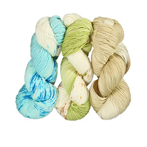 Delicious Yarns Fresh Baked Yarn Club yarn '18 Summer - Coconut/Jellybean/Honeydew Choc Chip