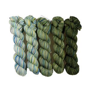 Koigu Gradient Family Pack kits Olive Gradient