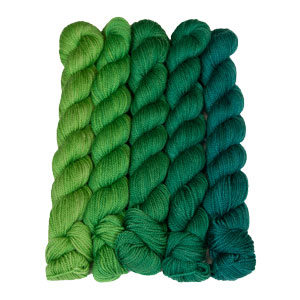 SweetGeorgia Tough Love Sock Party of Five Mini-Skein Set yarn Emerald