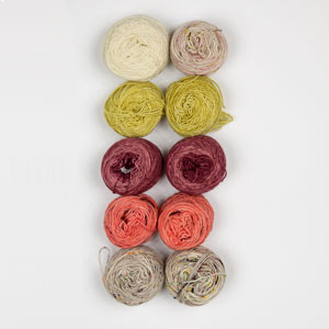 Jimmy Beans Wool Mini and Scraps Grab Bags kits Hand Dyed Yarns Grab Bag (fingering) - Autumns