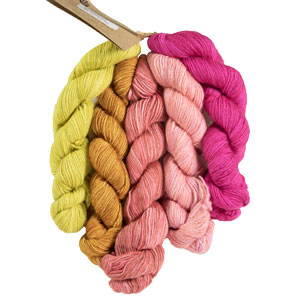 Manos Del Uruguay Fino Miniskein Sets yarn 16 Sybil