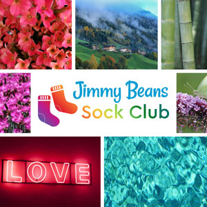Jimmy Beans Wool 2020 Jimmy Beans Wool Sock Club kits *Monthly* Auto-Renew Subscription - Fun and Vibrant