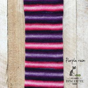 Biscotte Yarns Bis Sock Autorayante yarn Purple Rain