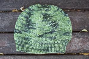 Erika's Winter Wheat Hat #1