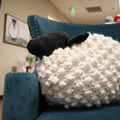 Cassidy's Bobble Sheep Pillow
