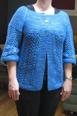 Adrienne's February Sweater