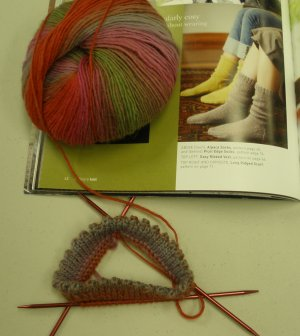Sandy's Picot Edge Socks