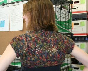 Leanne's Pretty in Misti Shrug