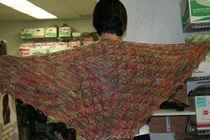 Robot Overlord Shawl