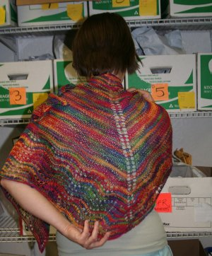 Bethany's Larch Shawl