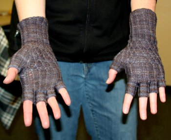 Autumn's Meander Mitts