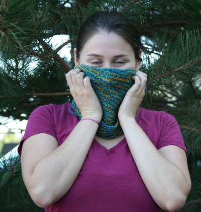 Shevawn's Donner Pass Cowl