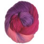 Lorna's Laces Shepherd Worsted Yarn - Iris Garden