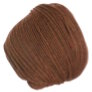 Cascade 220 Superwash - 1920 - Pumpkin Spice (Backordered)
