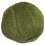 Cascade 220 Superwash - 1919 - Turtle