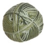 Crystal Palace Panda Silk - 4005 Fern Tones (Discontinued)