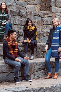 Brown Sheep Hogwarts House Scarves Kit - Scarf and Shawls