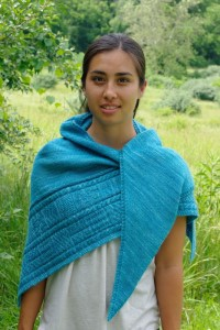 Madelinetosh Pashmina Ganz Shawl Kit - Scarf and Shawls