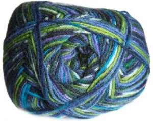 Berroco Sox Yarn - 1477 Kingston