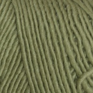 Brown Sheep Lamb's Pride Worsted Yarn - M184 - Pistachio
