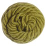 Brown Sheep Lamb's Pride Bulky - M171 - Fresh Moss