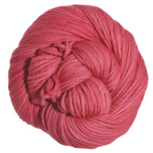 Blue Sky Fibers Worsted Hand Dyes Yarn - 2018 Strawberry (Discontinued)