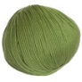 Cascade 220 Superwash - 0841 - Moss
