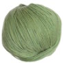 Cascade 220 Superwash Yarn - 0905 - Celery