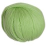 Cascade 220 Superwash - 0850 - Lime Sherbert
