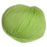 Cascade 220 Superwash Yarn - 0851 - Lime