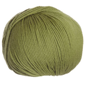 Cascade 220 Superwash Yarn - 0891 - Misty Olive