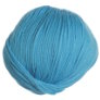 Cascade 220 Superwash - 0849 - Dark Aqua